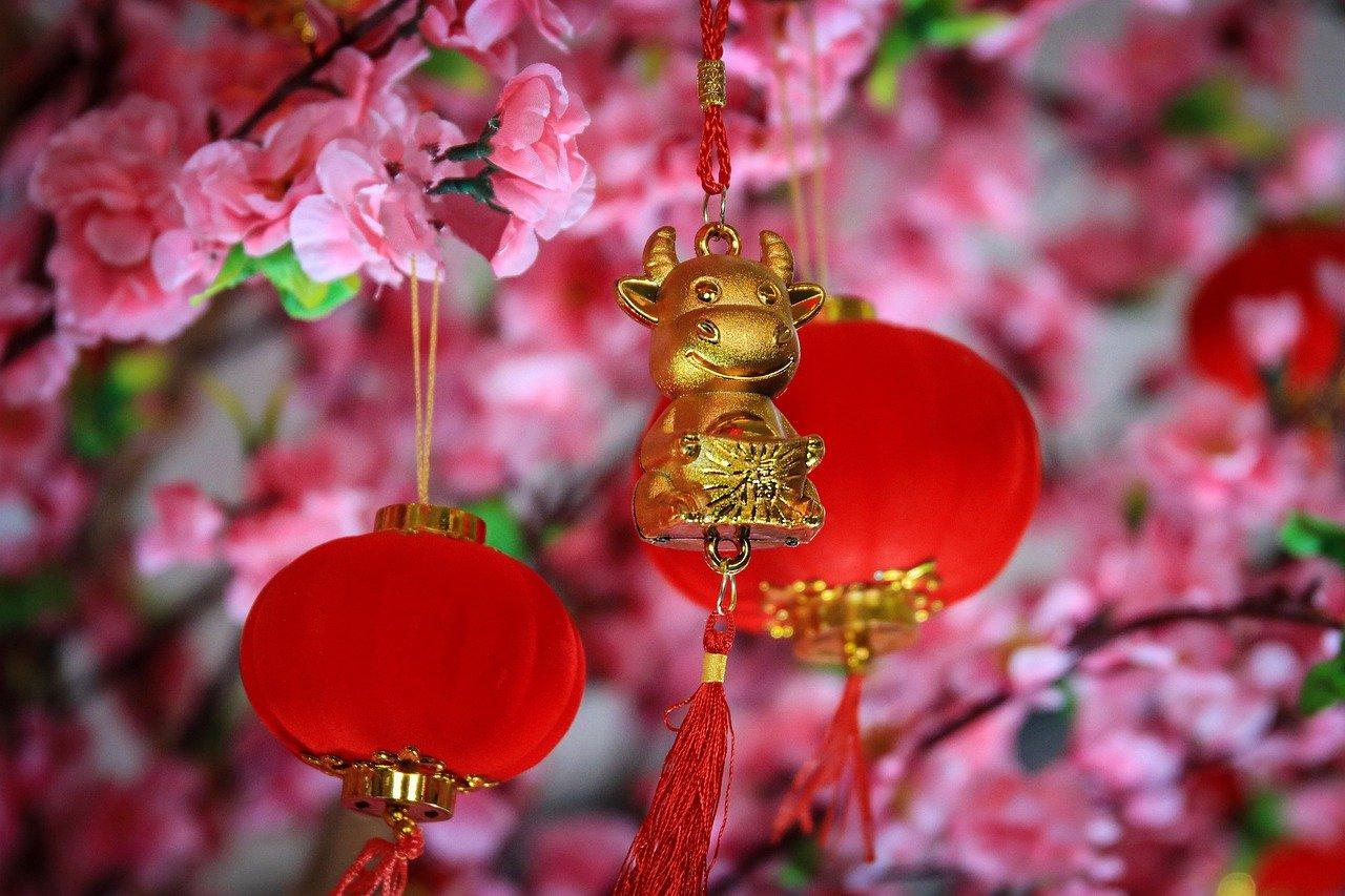 3 RECETAS CHINAS SIN GLUTEN para celebrar el Año Nuevo Chino